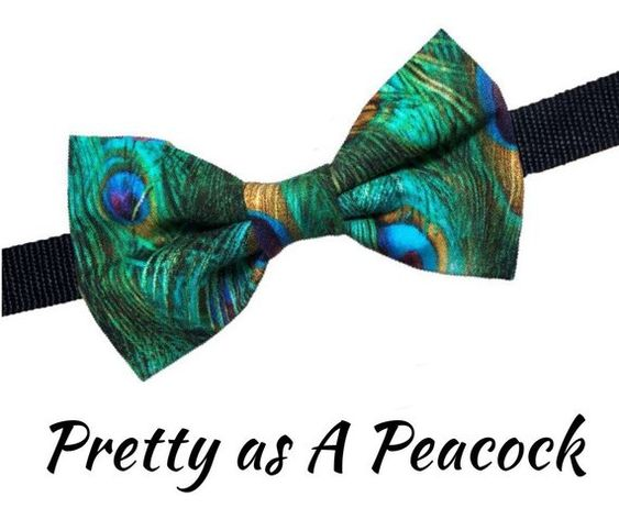 peacock bow tie